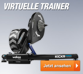 Virtuelle Trainer